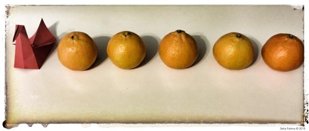 vintage_oranges1.jpg